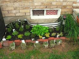 Small Picture Garden Design Garden Design with Starting a Herb Garden Veg Club