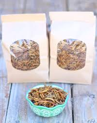 raise mealworms for your ens is easy with this guide