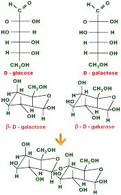 lactose chemical formula