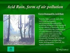 essay acid rain  essay acid rain