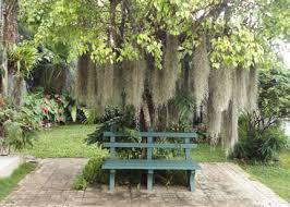 Small Picture Sri Lankan Gardens Deviprasadregmiinfo
