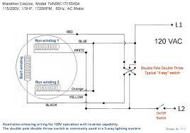 Electric Motor Wiring Diagram Wiring Diagram