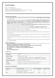 Senior Java Developer Resume Sample Newskey Info
