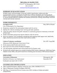 Chronological Or Functional Resume Sample Of Chronological Resume
