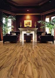 Get Best Brands In Bamboo Flooring At BrandFloors. Exclusive Distributor Of  Bamboo Floors, Bamboo Flooring, Bamboo Hardwood Floors In La Crosse Area.