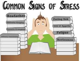 about stress in college essay about stress in college