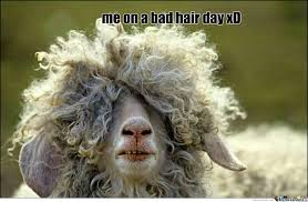 Bad Hair Day by xxrune - Meme Center via Relatably.com