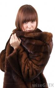 mink hooded fur coats might be best for mild climates