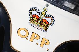 Opp Investigate Weapons Call In Lakeshore Windsoritedotca News