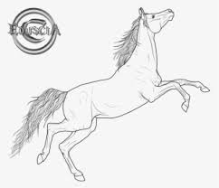 friesian horse arabian horse coloring