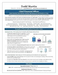 Resume Of Lovely Format On Samples Chief Financial Officer Consumer ...