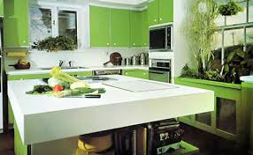 ... Terrific Kitchen Decoration With Light Green Kitchen Cabinet : Sweet L  Shape Kitchen Decoration With Light ...