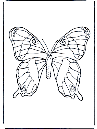 Colorareit Disegni Da Colorare Animali Insetti Farfalla 1 Do Az