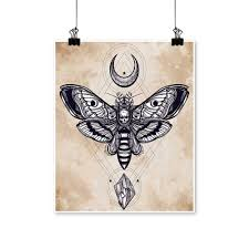 Amazoncom Wall Decor Deaths Head Hawk Moth With Moons And Stones