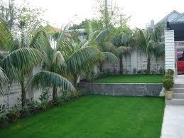 Small Picture Contemporary Garden Design Ideas Nz Sixprit Decorps