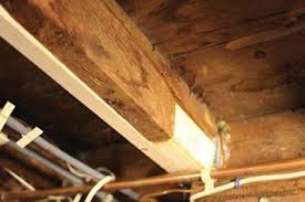 A Freelancer S Version Of Sistering A Joist Leaves Lots To Be Desired Framingcarpentry Homerepair Floors Sistering Joists Framing Carpentry Home Repair