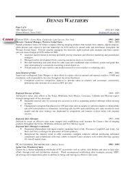 Vp Sales Resume Sales And Marketing Resume Sample Pdf Resume Web