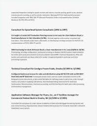 Engineering Technical Report Template Engineering Design Report Template Astonising Format For A Resume