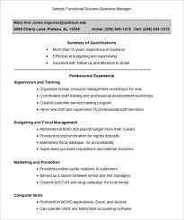 Combination Resume Template Free Resume Sample