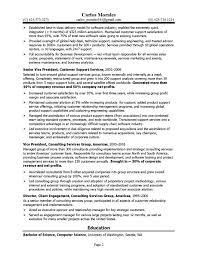 cto resume sample cto resume sample 2 example of executive resume