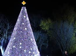 Hubbard Park Christmas Lights 2018 How To Watch The 2018 National Christmas Tree Lighting