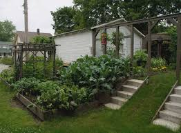 horibble terrace home garden landscaping ideas for vegetable garden complete with wooden container