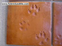 animal print saltillo dog en coyote print saltillo tile is very rare accounting for less than 03 of all saltillo produced
