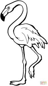 Roze Flamingo Kleurplaat Gratis Kleurplaten Printen