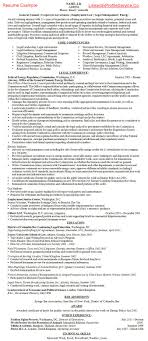 Document Review Attorney Resume Sample Resume For Your Job