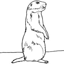 Small Picture Prairie Dog Baby And Mother Coloring Page Free Printable Coloring