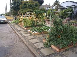 Small Picture Front Yard Vegetable Garden Design Ideas Front yard vegetable