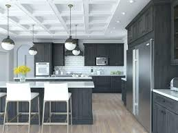 Dark Grey Kitchen Cabinets Cabinet Gray Floor Light Colored