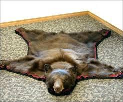 bear head rug bear head rug skin rugs full size of taxidermy polar black faux with