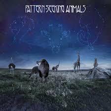 <b>Pattern</b>-<b>Seeking Animals</b>
