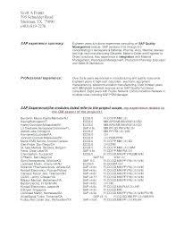 Project Executive Summary Template Naomijorge Co