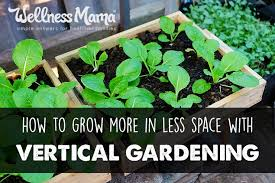 how to grow more in less space with a vertical garden