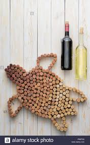 Wine Bottle Cork Designs Creative Marine Turtle Design Of Used Wine Corks With Two