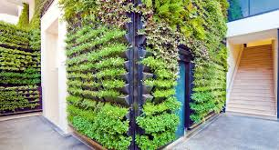 urban gardens urbanfarm