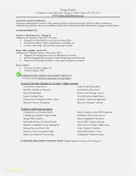 Download 55 Sample Resume Templates Free Download Professional