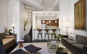 Kitchen And Living Room Small Living Room Idea Dgmagnetscom