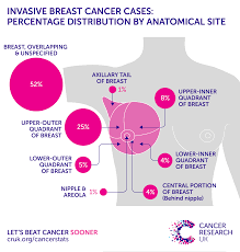 Breast Cancer Risk By Age Chart Breast Cancer Incidence Invasive Statistics Cancer