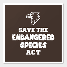 <b>Endangered</b> Posters and <b>Art</b> Prints   TeePublic