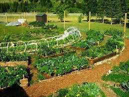 Permaculture Garden Design Ideas Keyhole Permaculture Garden Greenmylife Anyone Can Garden