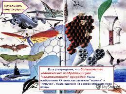 Реферат на тему птицы > актуальные решебники алгебра класс  Реферат на тему птицы