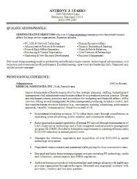 Gallery of professional it director resume sample - Professional .