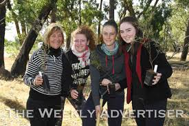 wama nature play day at pomonal the weekly advertiser wama nature play day at pomonal