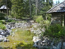 Alpine Park Free Images Landscape Nature Grass Rock Plant Trail Flower