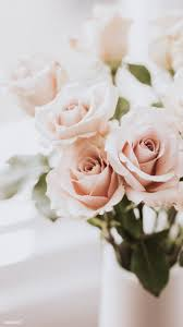 We've gathered more than 5 million images uploaded by our users and sorted them by the most popular ones. Download Premium Image Of Pink Roses By The Window Mobile Phone Wallpaper Flower Phone Wallpaper Cute Wallpaper For Phone Gold Wallpaper Iphone