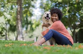 Pet credit card with bad credit. Use Carecredit For Pets Best Insurance Carecredit