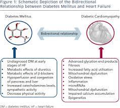 Venn Diagram Type 1 Type 2 Diabetes Type 1 And Type 2 Diabetes Venn Diagram Diagram Diabetes In